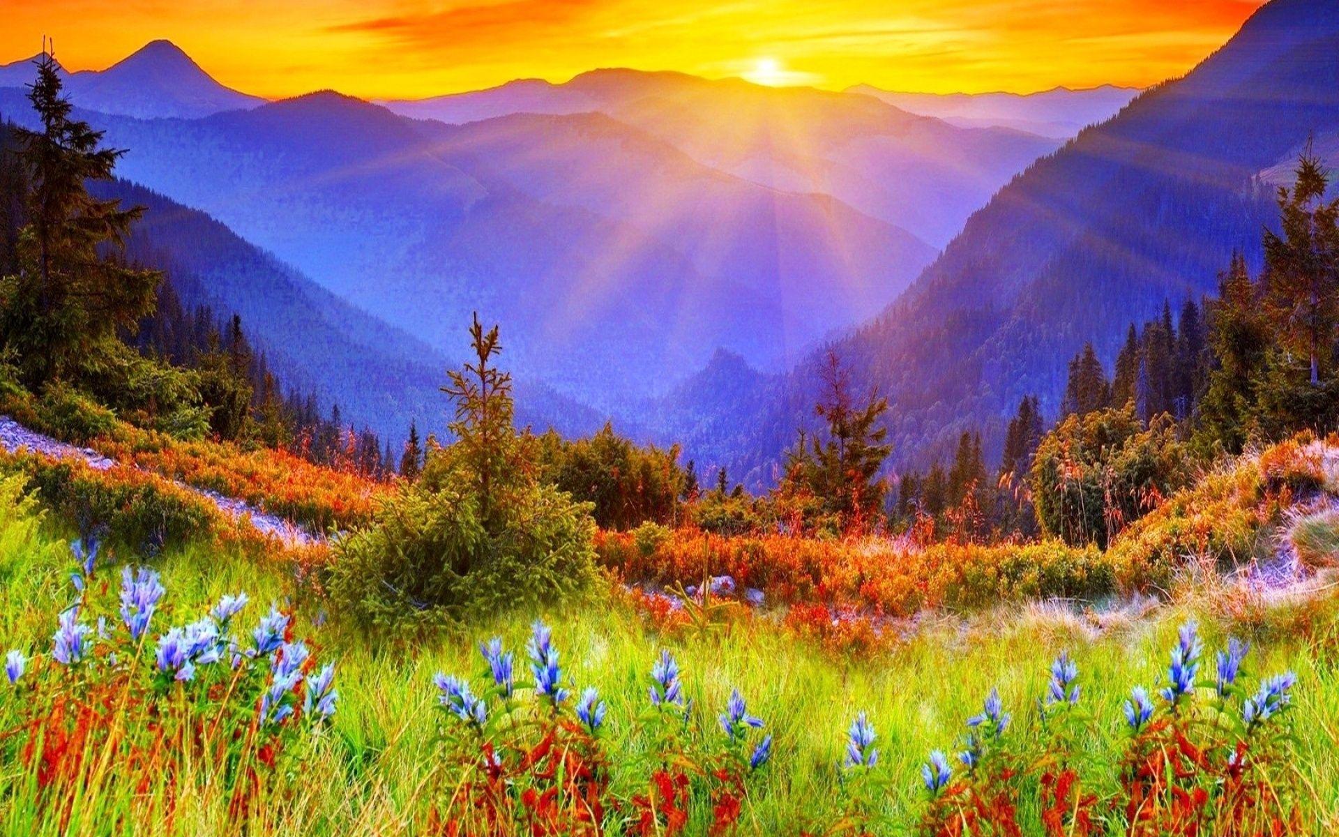 Mountain Sunrise Beautiful Landscape Wallpaper Hd Wallpapers Mountain Landscape Sunrise Photos Sunrise Wallpaper