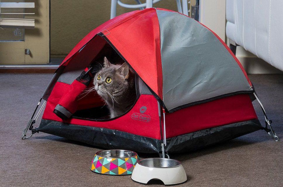 cat camp 猫ちゃん用ミニミニテント キャットキャンプ ガジェットの購入なら海外通販のrakunew ラクニュー ミニテント 猫 テント 猫用テント