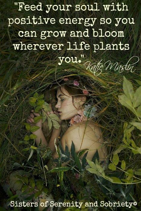 alimenta tu alma con energía positiva así podrás crecer y florecer donde sea que la vida te plante...  no necesitamos ir a un sitio especial para ser felices