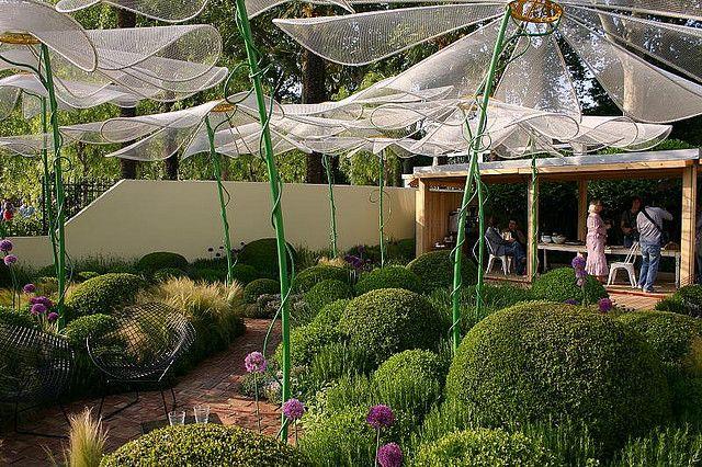 Buksbomkugler i selskab med lavendel, prydløg, græsser og lave vækster med blågrønt og gråt løv