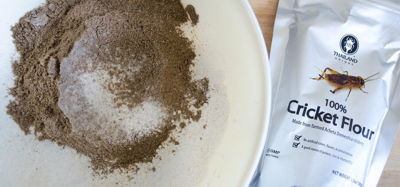 Baking with Cricket Flour