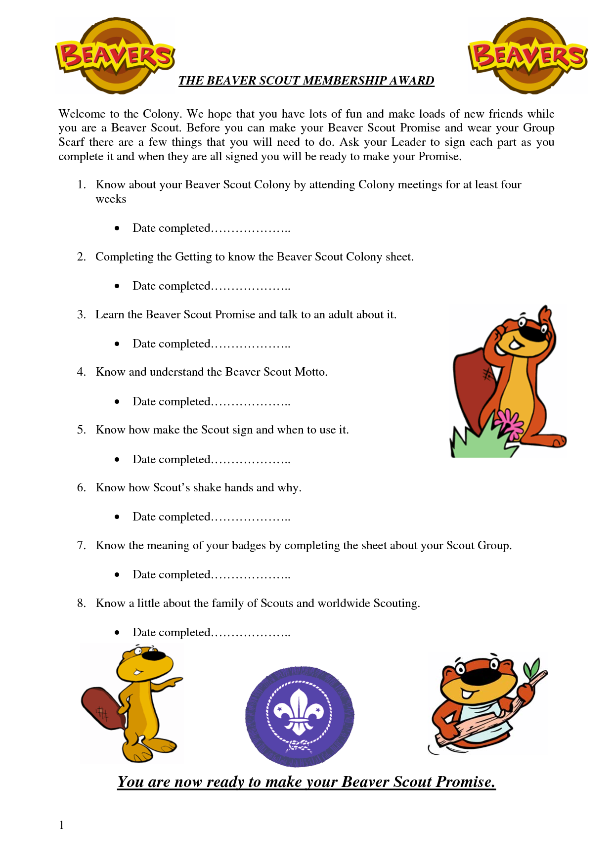 You Are Now Ready To Make Your Beaver Scout Promise