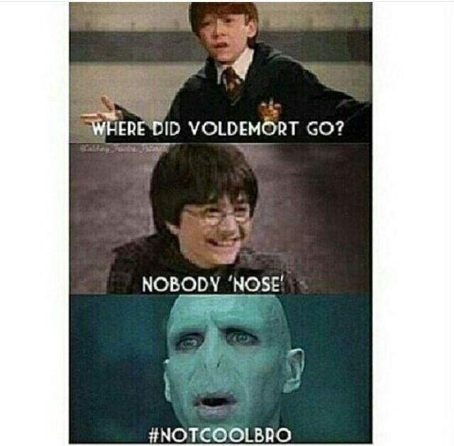Memes Of Harry Poter Harry Potter Memes Hilarious Harry Potter Jokes Harry Potter Puns