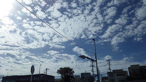 金甲's photostream