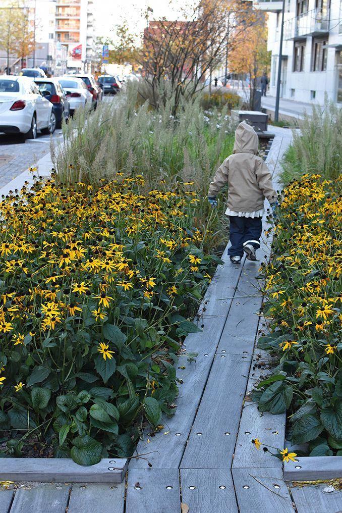 Landscape Gardening Jobs In Bristol   Streetscape design ...