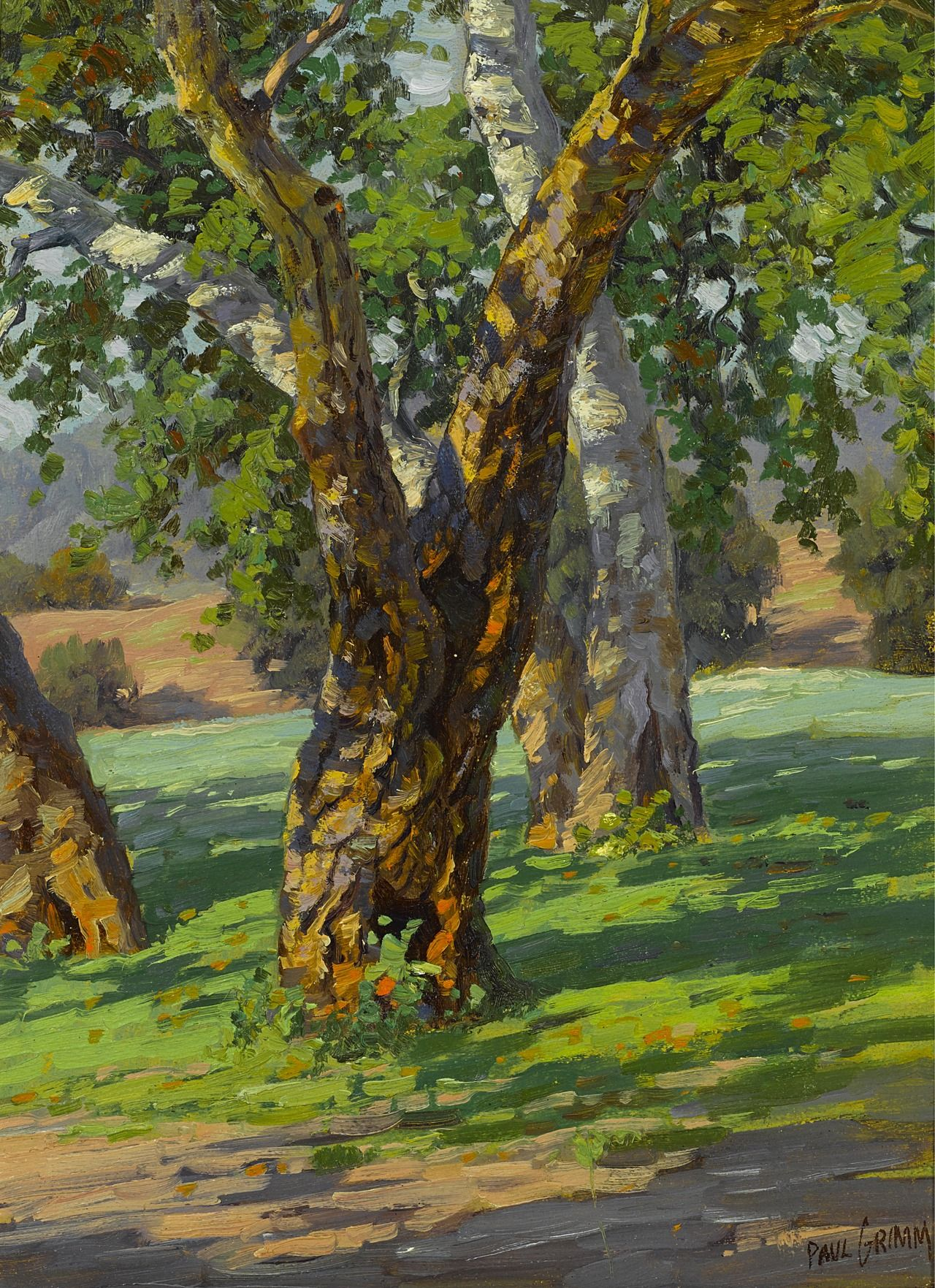Ymutate Paul A Grimm 1891 1974 Trees And Shadow