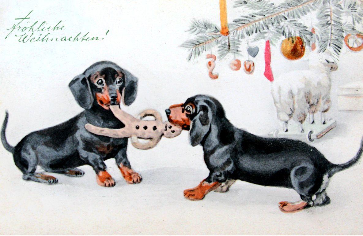Frohliche Weihnachten Dachshund Christmas Vintage Dachshund