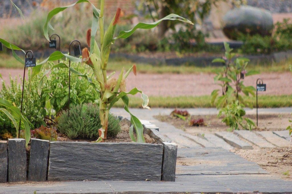 Dalle De Schiste Pour Faire Un Petit Potager Amenagement Jardin Cloture Idees Jardin Amenagement Jardin