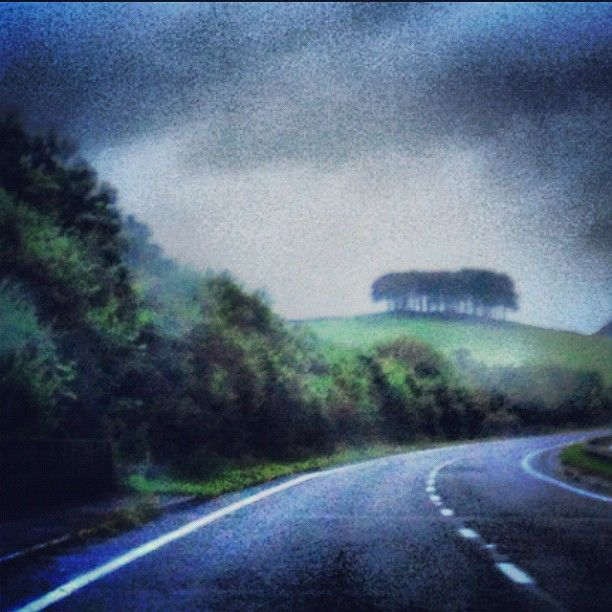 Off for a short holiday in sunny ( well rainy windy cold ) Cornwall. #6 in the I must stop taking pictures whilst driving series especially on windy wet Cornish roads. These are my favourite trees on the A30. #cornwall #rainysummer #holiday. 16th August 2012