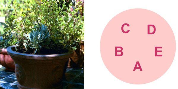 Container Gardening Recipes   Hastings Nature U0026 Garden Center   Landscape  Design