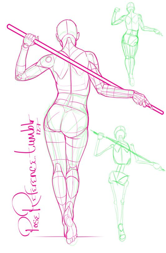 A Collection Of Anatomy And Pose References For Artists Anatomy