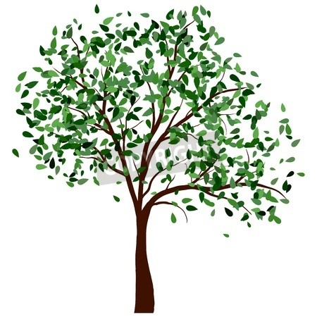 Summer Tree With Green Leaves Illustration Summer Trees Leaves Illustration Tree Mural