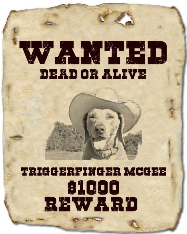 Wanted Poster Creator - Tuxpi.com Link: https://www.tuxpi.com/photo ...