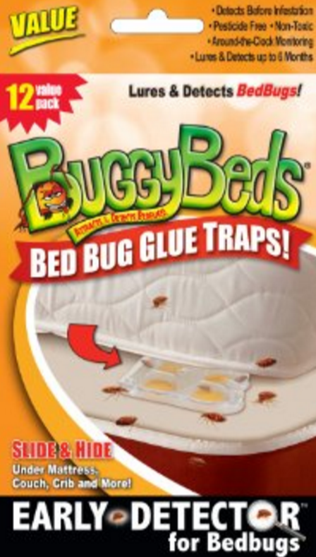 Buggybeds Update After Shark Tank Now In 2018 Bed Bugs Glue