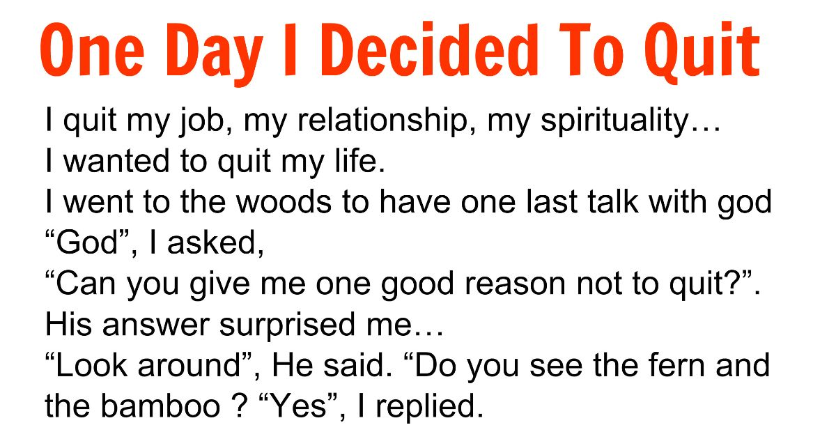 ONE DAY I DECIDED TO QUIT I quit my job, my relationship, my