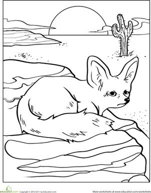 Color The Desert Fox Desert Animals Deserts Animals
