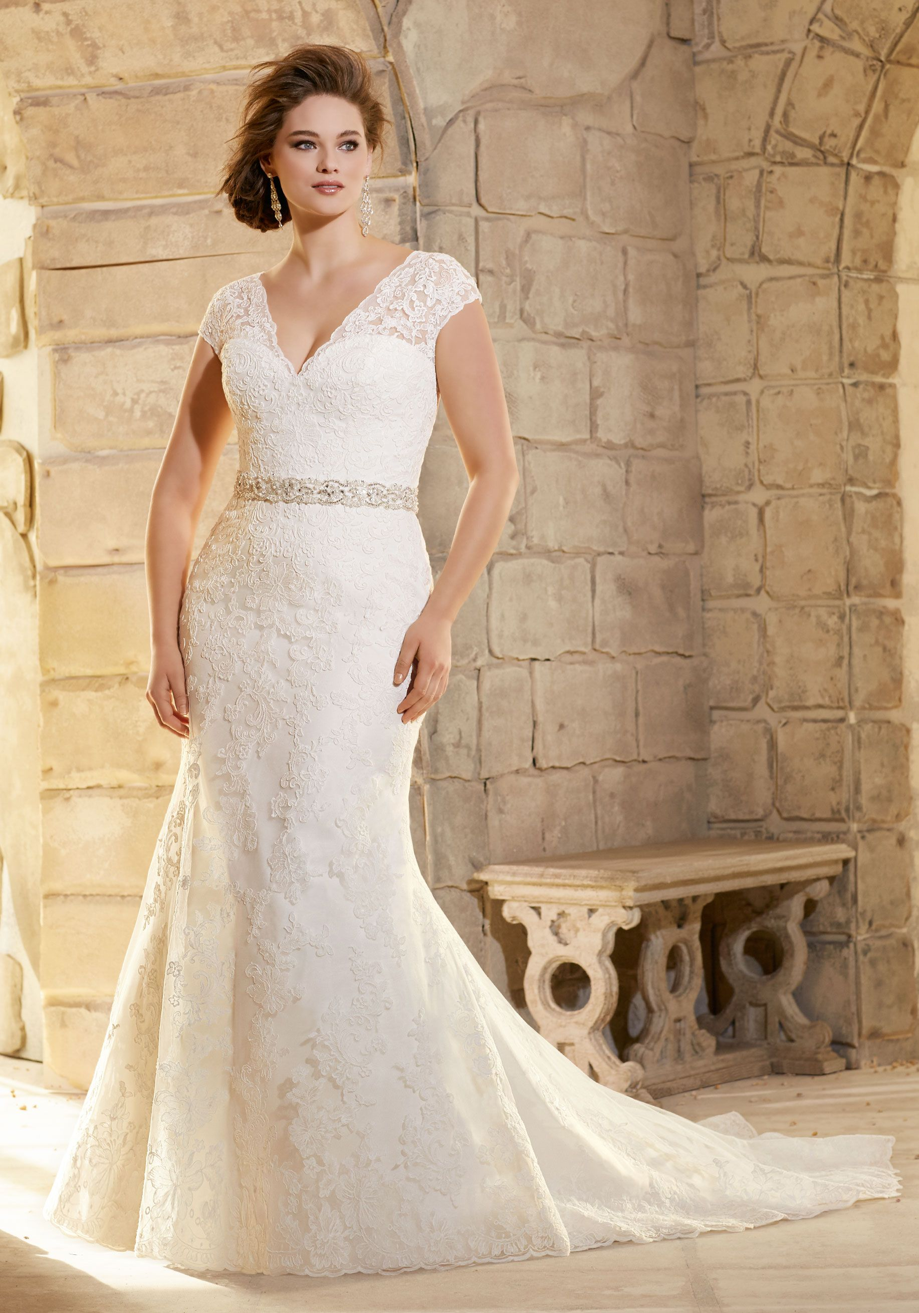 Silver wedding dresses plus size  Embroidered Appliques on Net with Wide Hemline Border Plus Size