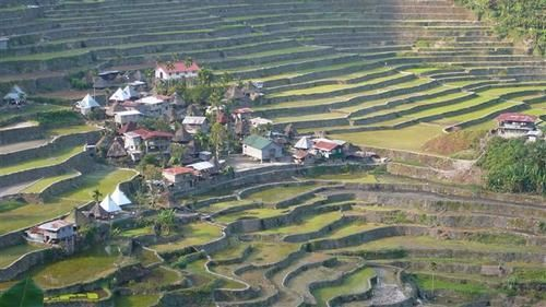 Les rizières de Banaue / Batad