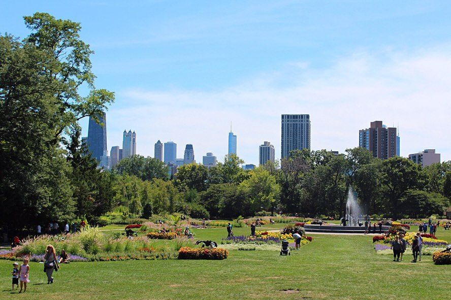 Lincoln Park Zoo Chicago Lincolnpark Chicago Usa Zoo Skyline Park Gardendesign Trees Fountain Lake Water Gr Park Lincoln Park Zoo Dolores Park