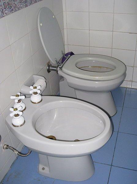 How To Use A Bidet Bidet Bidet Bathroom Toilet