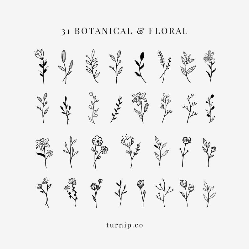 BOTANICAL & Floral Black White Clipart Bundle Set PNG Flowers Files Designs Vector PDF Wall Art Print Plant Sprigs Wedding Elegant Leaf