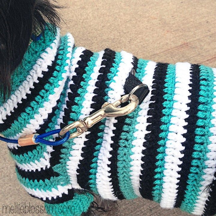 Crochet Dog Sweater Crochet Dog Clothes Crochet Dog