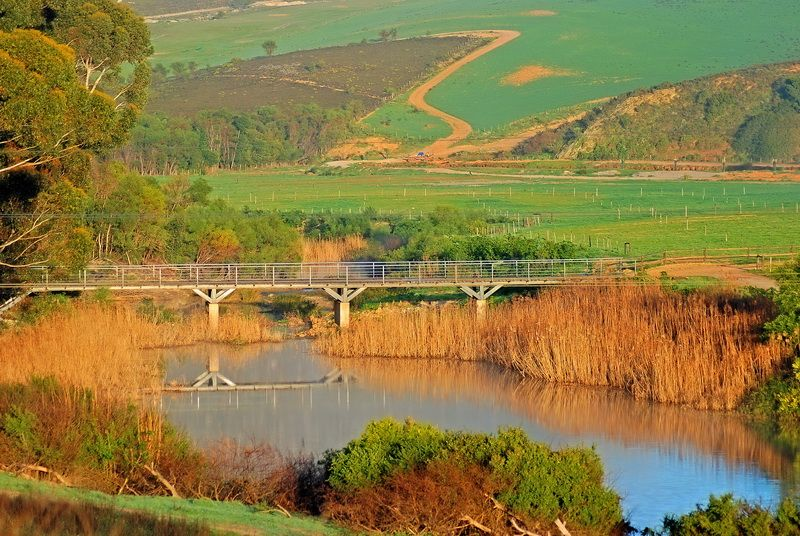 A river in the overberg south africa south africa