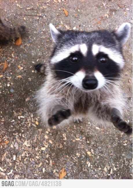 Can you give me a hug?