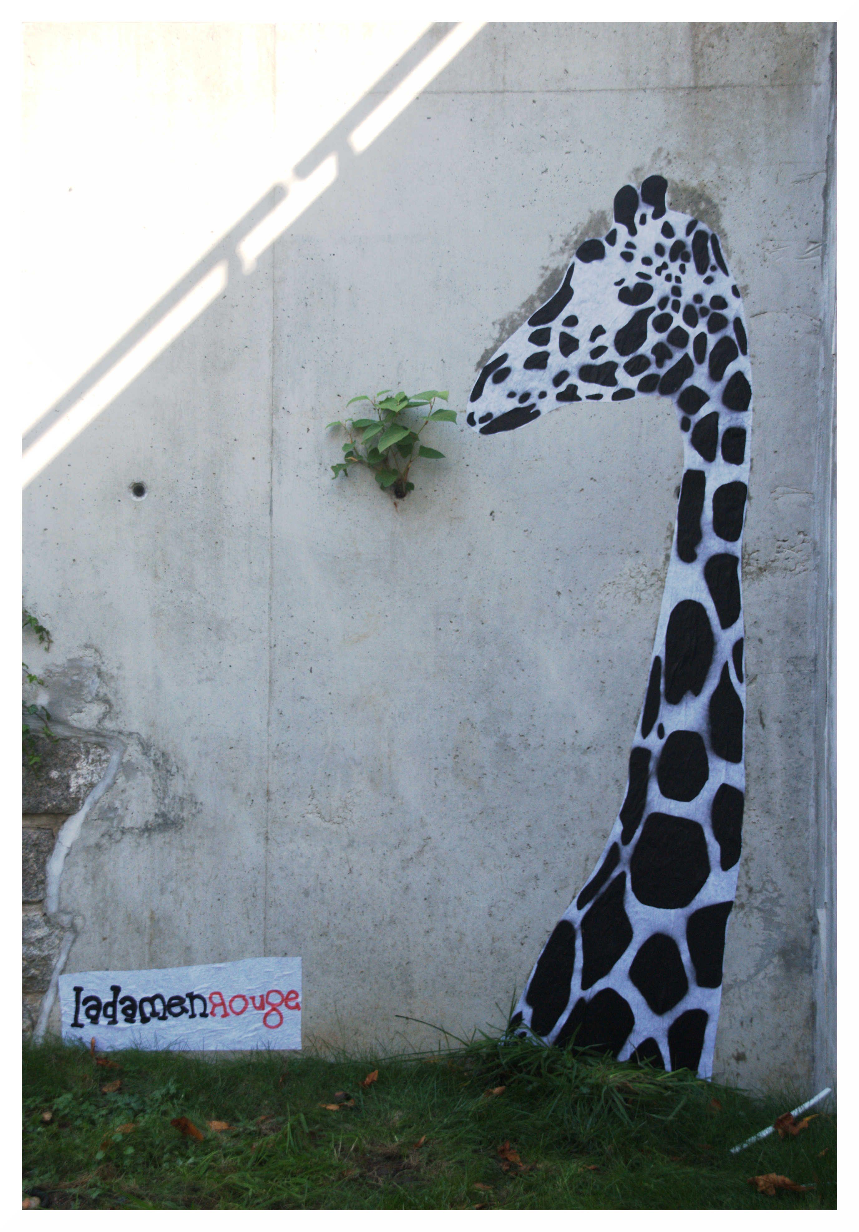 J-RAF Ladamenrouge Street Art St Etienne