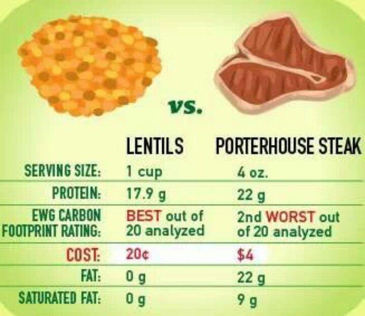 Lentils Vs Meat Protein