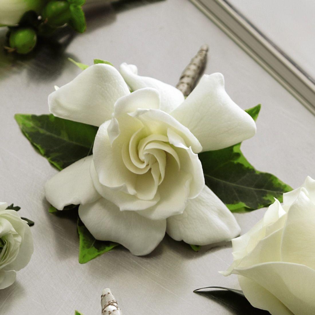 The Ftd Gardenia Boutonniere Gardenia Flower Delivery