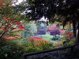 Image result for butchart gardens victoria canada #butchartgardens