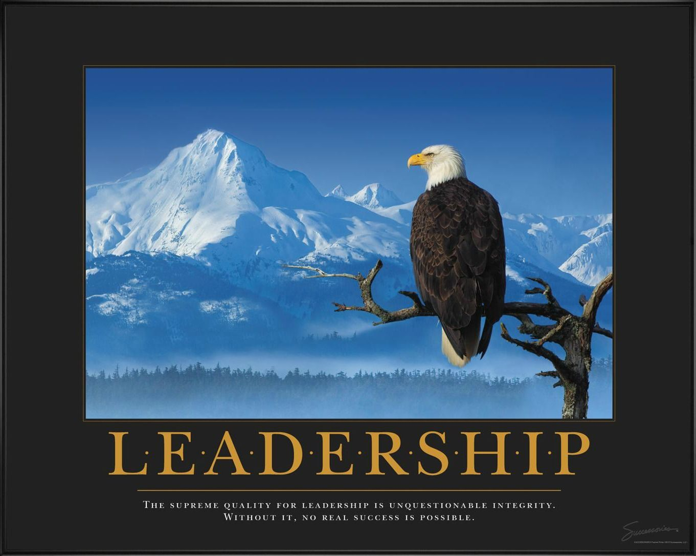 Leadership Eagle Branch Motivational Poster - The supreme ...