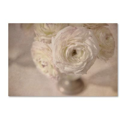 Trademark Art White Persian Buttercup Still Life by Cora Niele Photographic Print on Wrapped Canvas Size: