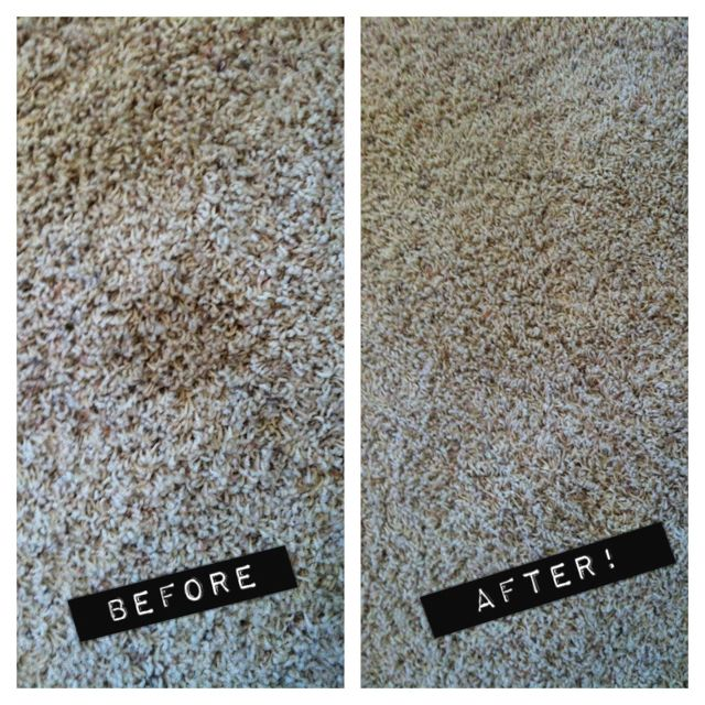 White Vinegar Water Sprayed Onto The Stain Set Your