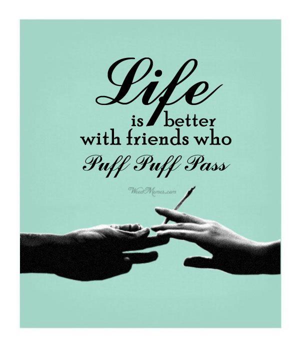 Stoner Friendship Quotes