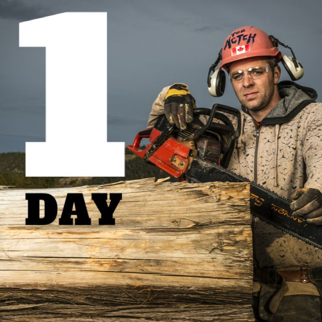Premier Home Staging California Hgtv: We're Just One Day Away From The World Premiere Of Timber