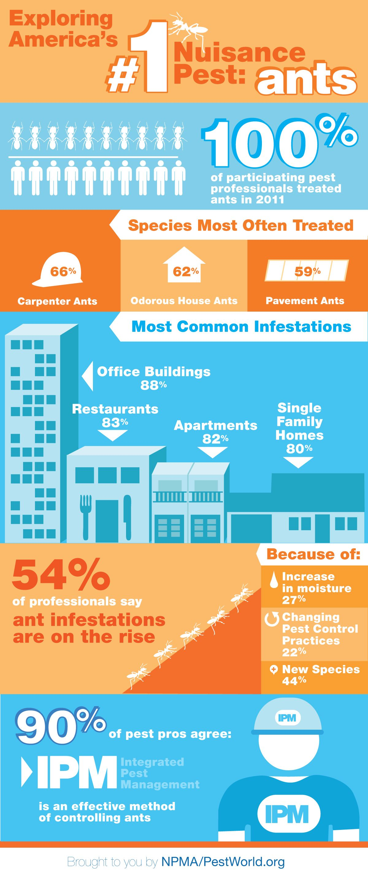 Ant Infographic | McCauley Brothers Termite & Pest Services ...