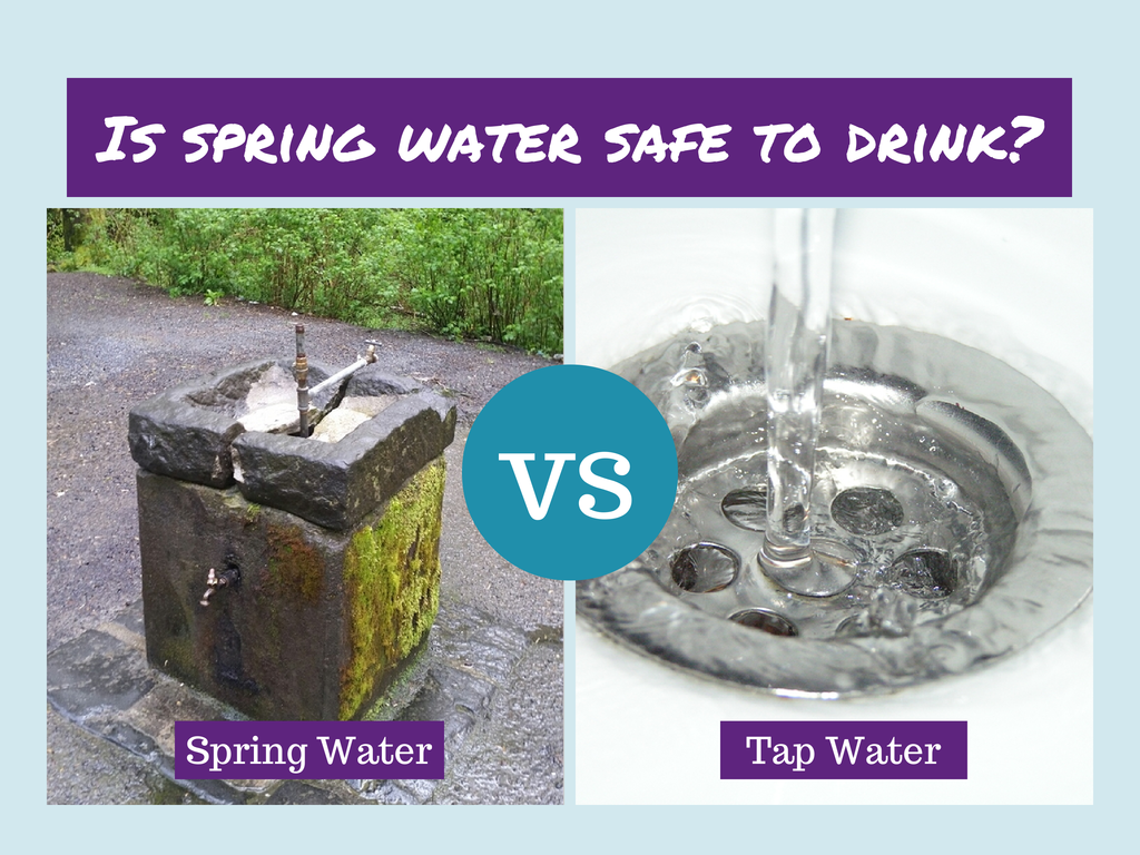 Is spring water safe to drink | Spring water, Water and Healthy recipes