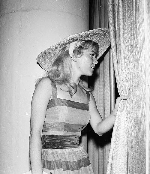 The Absolute most (Posts tagged tuesday weld) | Tuesday weld, Guys my age, Actresses