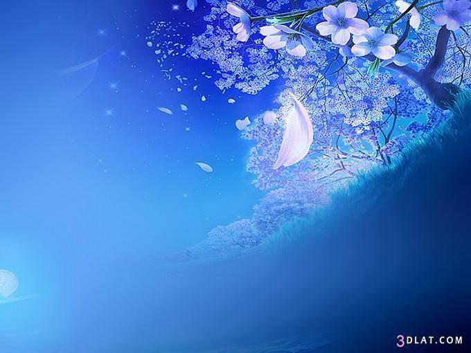 صور خلفيات بوربوينت روعه خلفيات ورود ورسومات جميلة Dream Photography Image Pictures