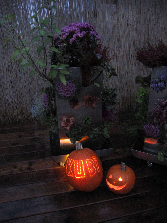 KUBI Halloween with vegetables. KUBI, ein vertikales Hochbeet für Balkon und Terrasse. Mit integriertem Kompostiersystem und Wasserspeicher! Ein ganzer Garten auf 1m², für jede Lebenssituation. Entwickelt für das Wesentliche am Gärtnern – Freude am Wachstum.