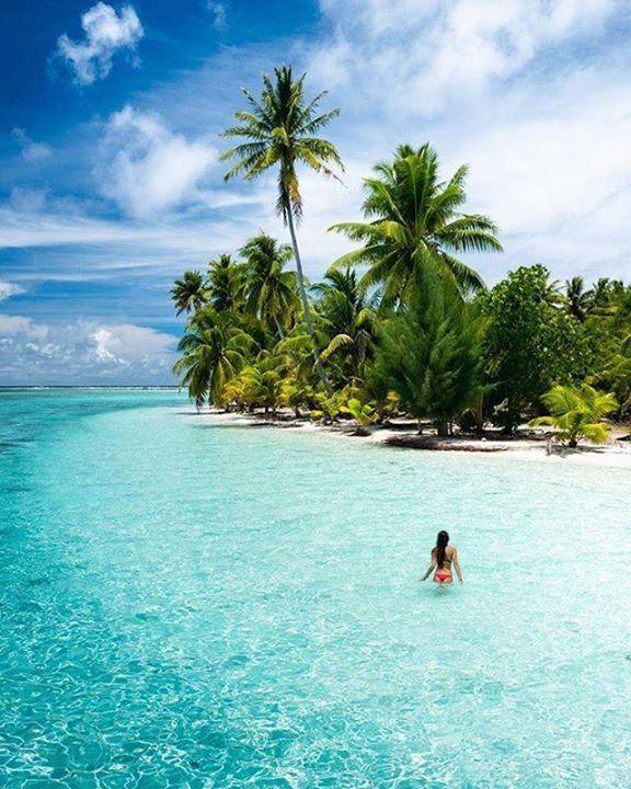 Honeymoon Island, Beautiful