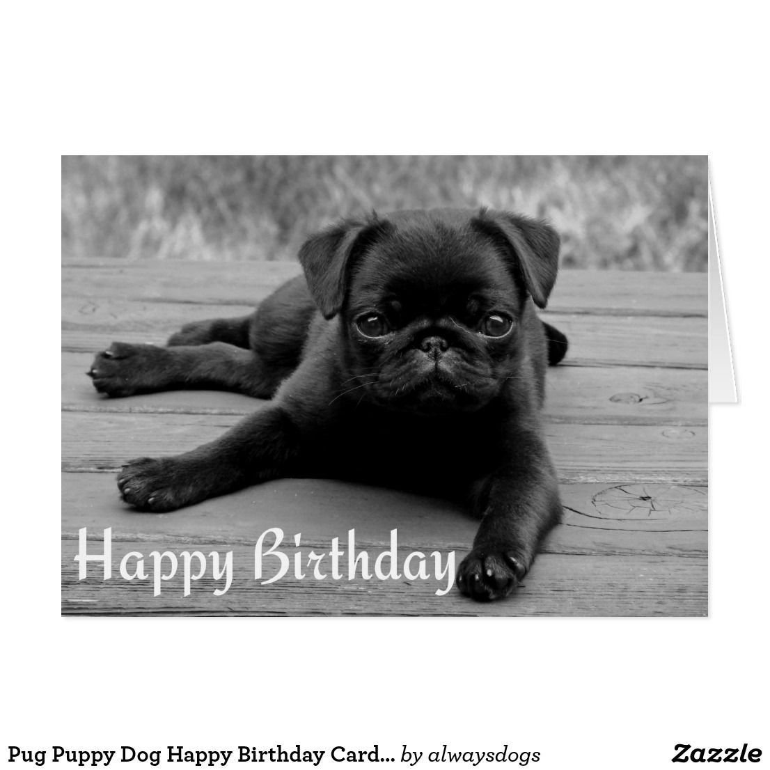 Pug Puppy Dog Happy Birthday Card Black White Zazzle Com