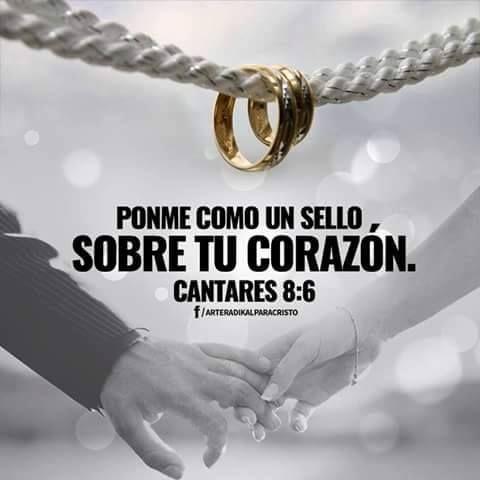 Cantares 8 6 Matrimonio Dios Matrimonio Frases Dios Te Ama