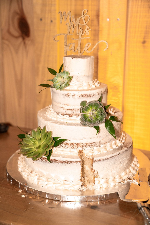 Succulent naked wedding cake ivory wedding cake ideas spring
