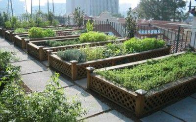 Come creare un orto urbano in poco spazio: 11 trucchi | Idee di Luce ...