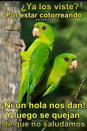 Saluden Ome Good Day Wishes My Best Friend Humor