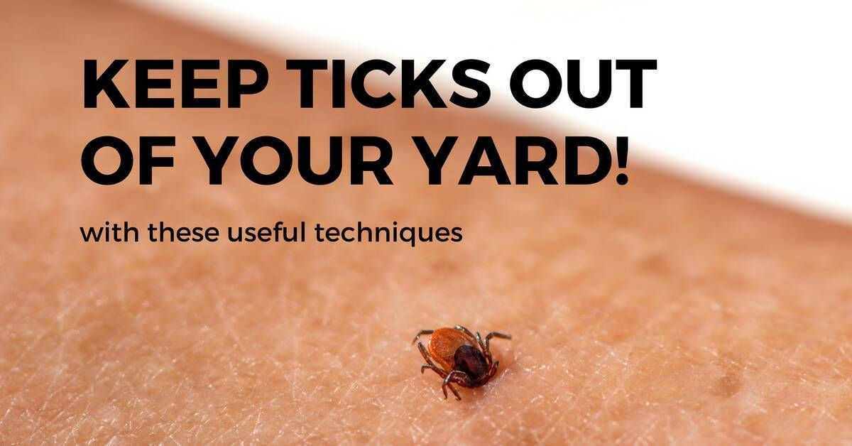 de8102c4a31efe0cf64f114bb0fa1910 - How To Get Fleas And Ticks Out Of Your Yard