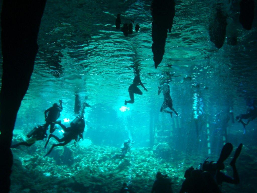 Cenotes da Península do Iucatão Mexico Viagens Pinterest